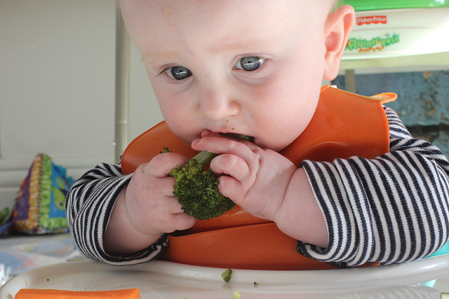 Alimentación complementaria: enfocarla para preservar la lactancia materna