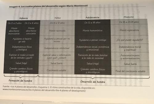 Montessori: los cuatro planos del desarrollo del niño