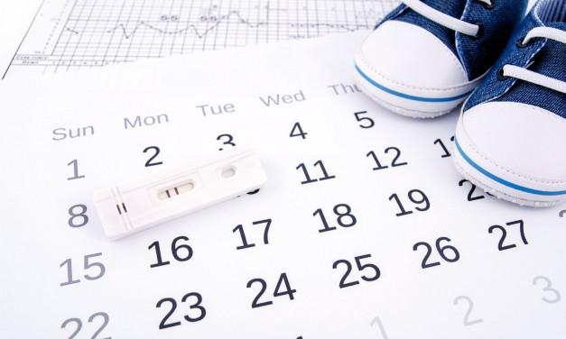 Calculadora de ovulación: qué es y por qué no me gusta