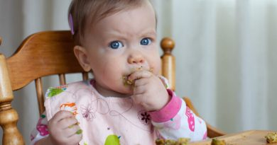 Baby-led weaning opinión
