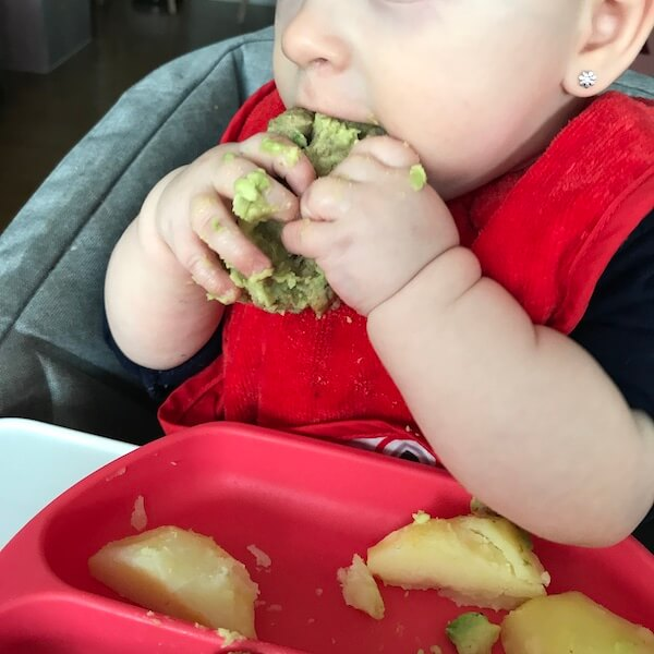 Baby-led weaning con seis meses